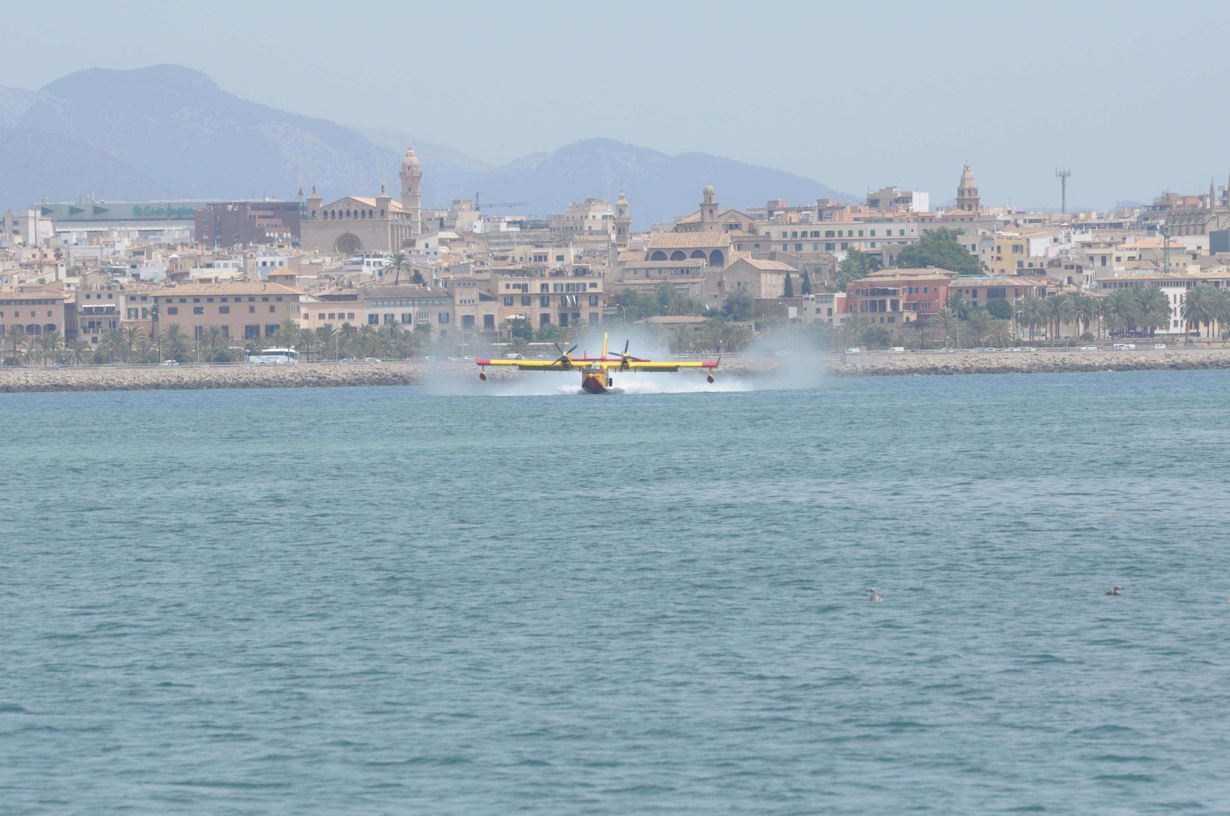 Übung der Wasserlandung von Amphibienflugzeugen im Hafen von Palma ...